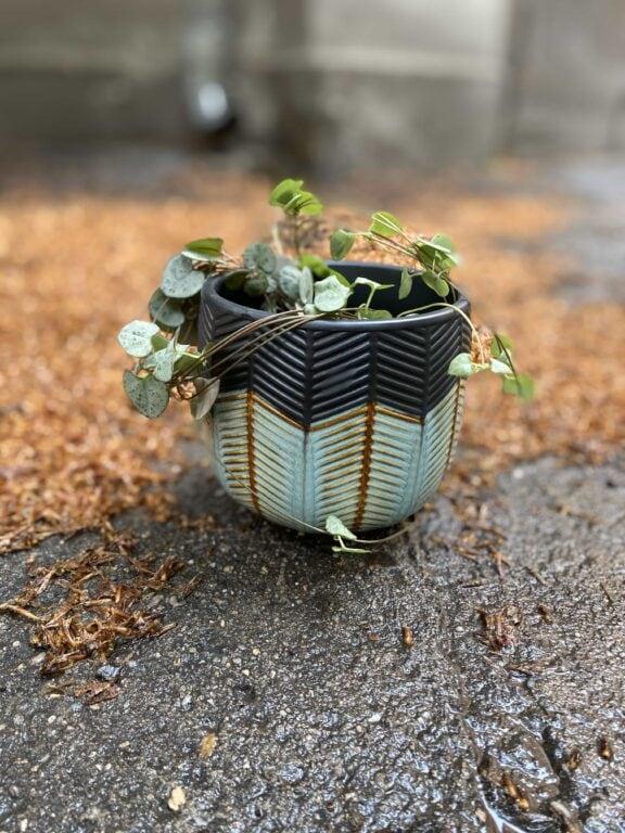 Zdjęcie Osłonka Falling Leaf 11x11 cm w kategorii doniczki, ujęcie 1