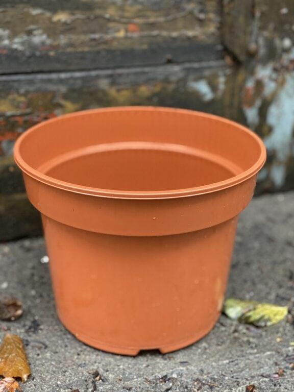 Zdjęcie doniczki lub oslonki: Doniczka plastikowa 22x18 cm, ujęcie 1