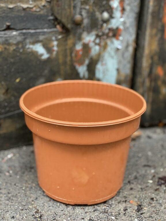 Zdjęcie doniczki lub oslonki: Doniczka plastikowa 16x13 cm, ujęcie 1