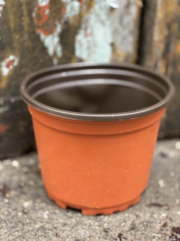 Zdjęcie doniczki lub oslonki: Doniczka plastikowa 13x11 cm, ujęcie 1