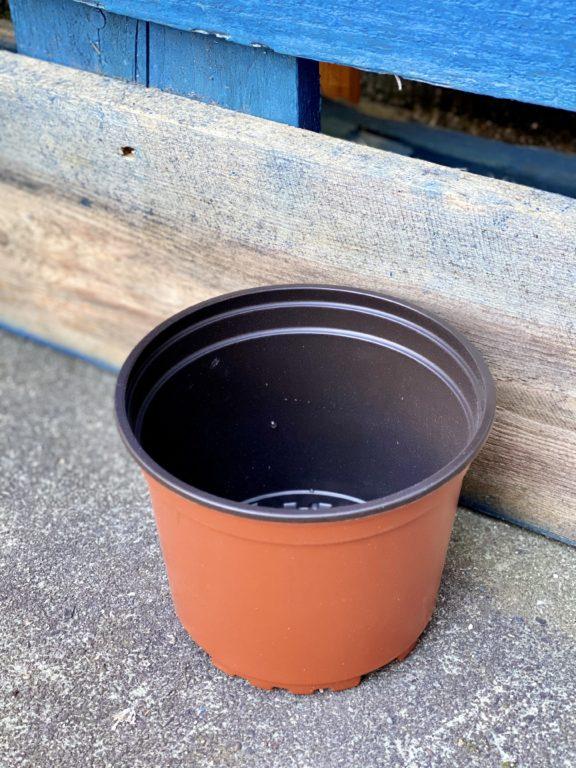 Zdjęcie doniczki lub oslonki: Doniczka plastikowa 12x10 cm, ujęcie 1