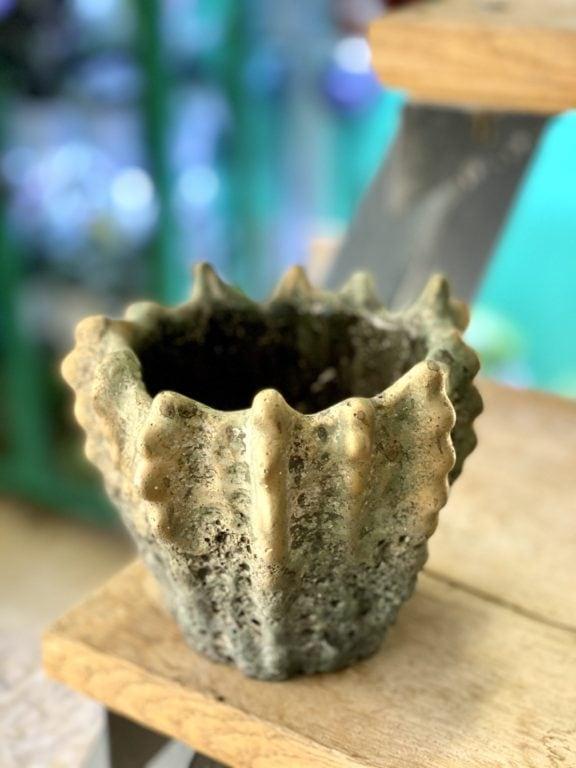 Zdjęcie doniczki lub oslonki: Osłonka Lordran 9x11 cm, ujęcie 1
