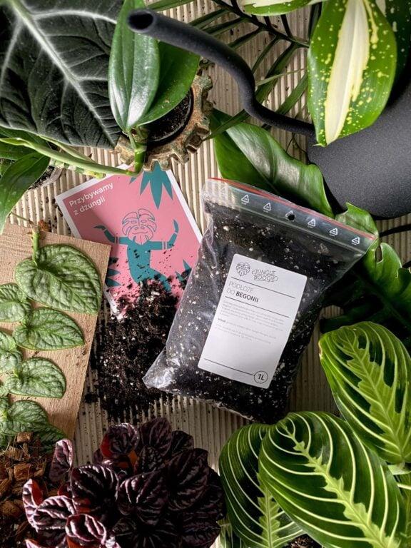 Zdjęcie akcesoria Podłoże do begonii 1l, ujęcie 1