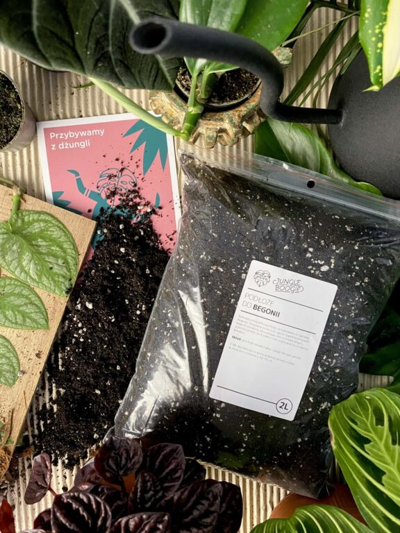 Zdjęcie akcesoria Podłoże do begonii 2l, ujęcie 1