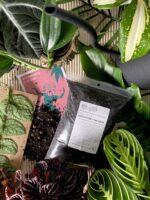Zdjęcie akcesoria Podłoże do kaktusów i sukulentów 1l, ujęcie 1