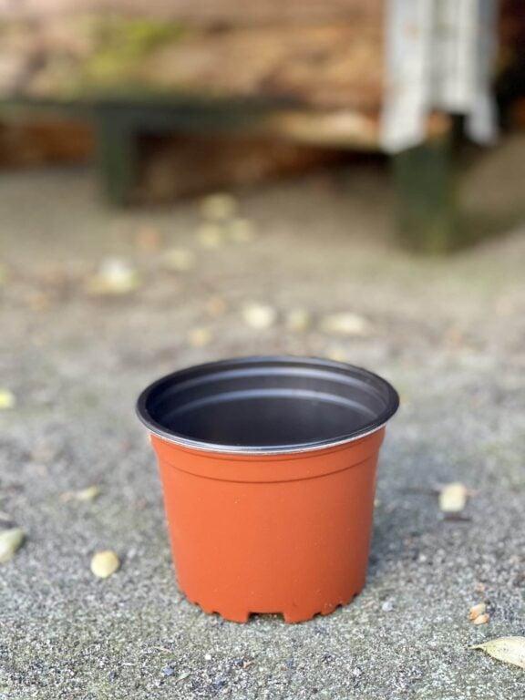Zdjęcie doniczki lub oslonki: Doniczka plastikowa 10x8cm, ujęcie 1
