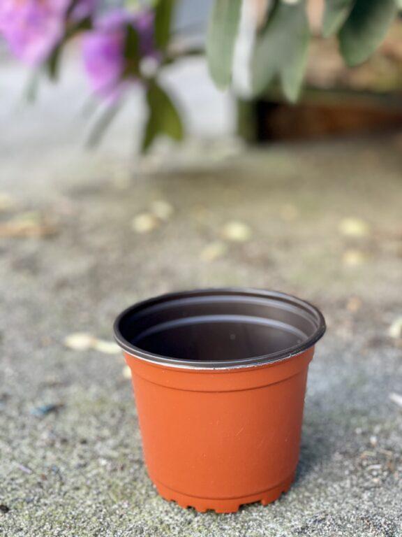 Zdjęcie doniczki lub oslonki: Doniczka plastikowa 11x9cm, ujęcie 1
