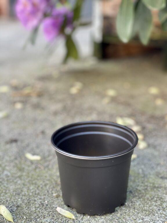 Zdjęcie doniczki lub oslonki: Doniczka plastikowa 12x10cm, ujęcie 1