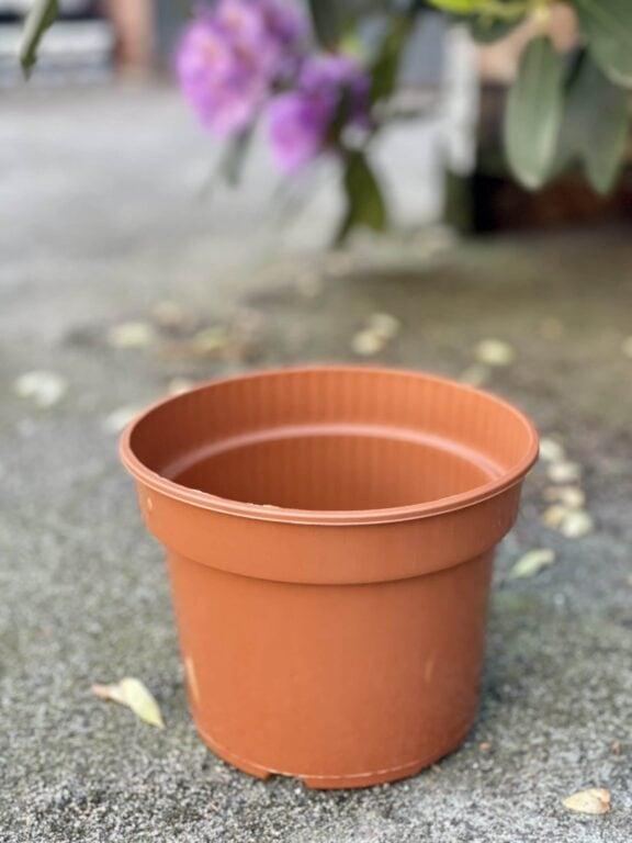 Zdjęcie doniczki lub oslonki: Doniczka plastikowa 17x13cm, ujęcie 1