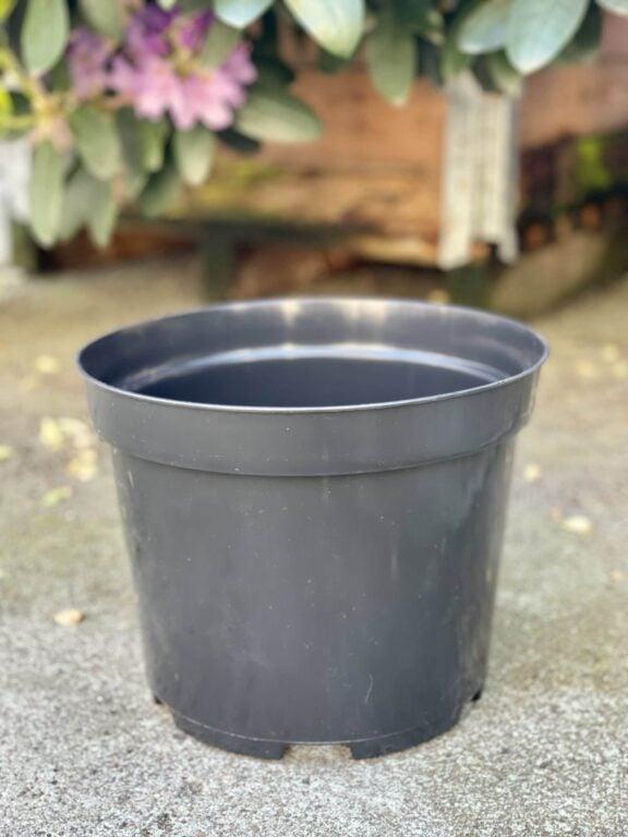 Zdjęcie doniczki lub oslonki: Doniczka plastikowa 25x21cm, ujęcie 1