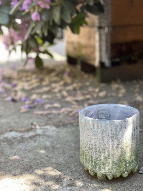 Zdjęcie doniczki lub oslonki: Osłonka Makalu 12x16cm, ujęcie 1