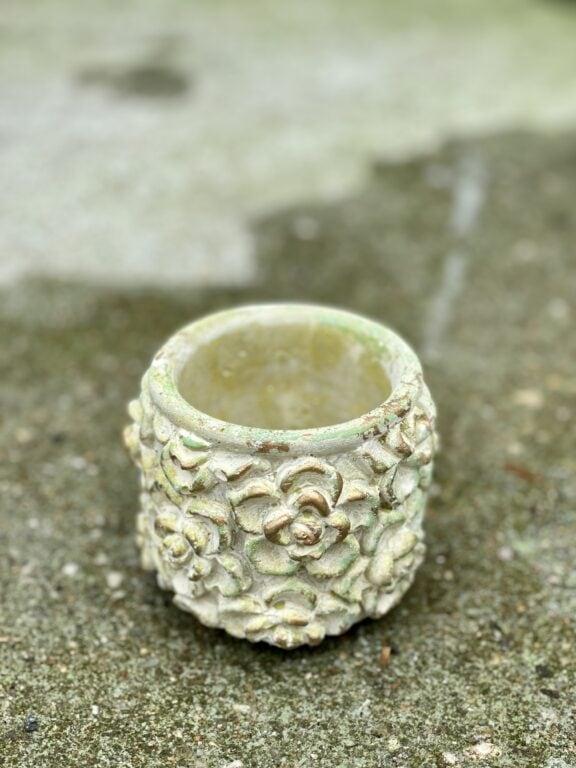 Zdjęcie doniczki lub oslonki: Osłonka Green Rose 6x8cm, ujęcie 1