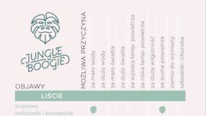 Infografika rośliny doniczkowe